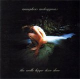 Amorphous Androgynous - The Mello Hippo Disco Show