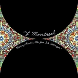 Of Montreal - Hissing Fauna, Are You the Destroyer?