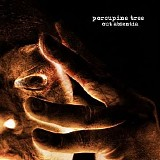 Porcupine Tree - Out Absentia
