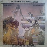 Joe Byrd And The Field Hippies - The American Metaphysical Circus