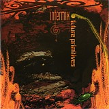 Intermix - Future Primitives