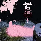 Ariel Pink - Dedicated To Bobby Jameson