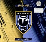 Various artists - Perfection: The Perfect Compilation