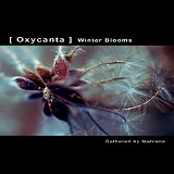 Various artists - Oxycanta - Winter Blooms
